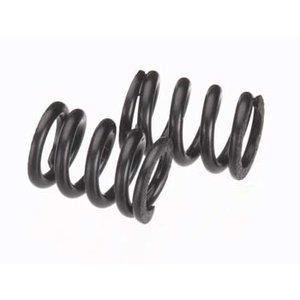 Axial . AXI SLIPPER SPRING BLACK