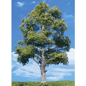 "Woodland Scenics . WOO Waters Edge Trees 3/4""- 1 1/4"""