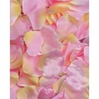 Victoria Lynn Collection . VLC LOOSE PETALS 100PC BRIDAL