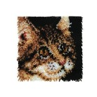 Caron . CAR LATCH HOOK TABBY CAT 12x12