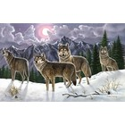 Royal (art supplies) . ROY ADULT PBN WOLVES