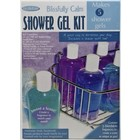 Life of the Party . LFP KIT BLISS/CALM SHOWER GEL INV