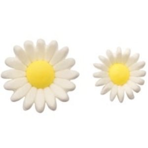 Wilton Products . WIL DAISIES ICING FLOWERS