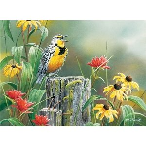 Cobble Hill . CBH MEADOWLARK MORNING 1000PC