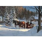 Cobble Hill . CBH Sugar Shack Horses 1000Pc Puzzle