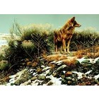 Cobble Hill . CBH Coyote In Winter Sage 1000Pc Puzzle