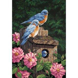 Dimensions . DMS GARDEN BLUEBIRDS 14X20 PBN