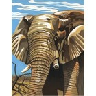 Colart Color & Co . COL ELEPHANT 9X12 PAINT BY #