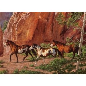 Cobble Hill . CBH HORSE CANYON 1000PC