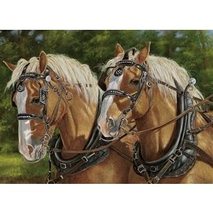 Cobble Hill . CBH BUCK AND BABE 1000PC