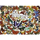 Cobble Hill . CBH BUTTERFLIES 1000PC