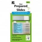 American Educational Products . AEP PREPARED SLIDE SET BOTANICAL