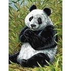 Colart Color & Co . COL PANDA/BAMBOO PAINT BY #