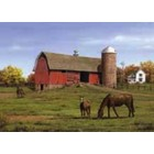 Colart Color & Co . COL HORSES/BARN PAINT BY #