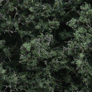 Woodland Scenics . WOO FINE LEAF FOLIAGE DARK GREEN