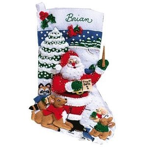 Janlynn Corporation . JAN CHRISTMAS FUN STOCKING