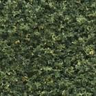 Woodland Scenics . WOO BLENDED TURF GREEN