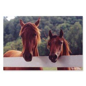 Melissa & Doug . M&D HORSE CORRAL 100 PC PUZZ