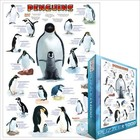 Eurographics Puzzles . EGP PENGUINS COLLAGE 1000PC