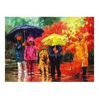 Anatolian . ANA Splish N Splash 1000Pc Puzzle