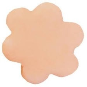 CK Products . CKP BLOSSOM DUST CANTALOUPE