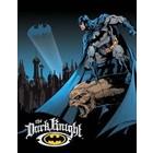 Desperate Enterprises . DPE Batman The Dark Knight