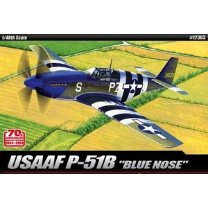 Academy Models . ACY 1/48 USAAF P-51B