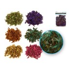 MultiCraft . MCI Feather Craft Minis Assorted