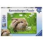 Ravensburger (fx shmidt) . RVB Adorable Bunny 150Pc