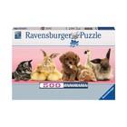 Ravensburger (fx shmidt) . RVB Animal Friends 500Pc