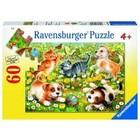 Ravensburger (fx shmidt) . RVB Cats & Dogs 60Pc Puzzle