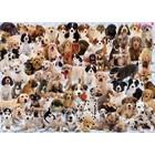 Ravensburger (fx shmidt) . RVB Dogs Galore 1000Pc Puzzle
