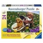 Ravensburger (fx shmidt) . RVB Frolicking Pup Puzzle 24Pc Puzzle