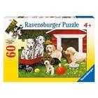 Ravensburger (fx shmidt) . RVB Puppy Party 60Pc Puzzle