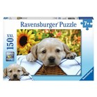 Ravensburger (fx shmidt) . RVB Puppy Picnic 150pc Puzzle