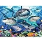 Ravensburger (fx shmidt) . RVB Smiling Sharks 300Pc Puzzle