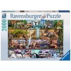 Ravensburger (fx shmidt) . RVB Wild Kingdom  Shelves 2000Pc Puzzle