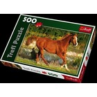 Trefl (puzzles) . TRF Beauty Of Gallop 500Pc Puzzle