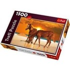 Trefl (puzzles) . TRF Stallions On Beach 1500Pc Puzzle