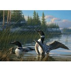 Cobble Hill . CBH Common Loons 1000Pc Puzzle