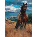 Cobble Hill . CBH Freedom 1000Pc Puzzle