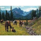 Cobble Hill . CBH Horse Meadow 1000Pc Puzzle