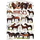 Cobble Hill . CBH Horse Quotes 1000Pc Puzzle