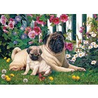 Cobble Hill . CBH Pug Family 1000Pc  Puzzle