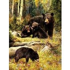 Cobble Hill . CBH Bears 500Pc Puzzle