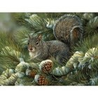 Cobble Hill . CBH Gray Squirrel 275Pc Puzzle