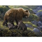 Cobble Hill . CBH Grizzly And Cubs 400Pc Puzzle