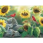 Cobble Hill . CBH Sunflower Buffet 500Pc Puzzle