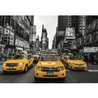 Anatolian . ANA New Yorl Taxi