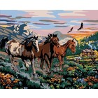 "Plaid (crafts) . PLD High Country Run (Horses) Paint by Number (20""x16"")"